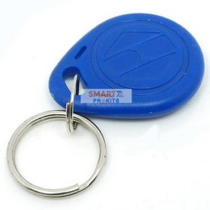 RFID Tag with Keychain